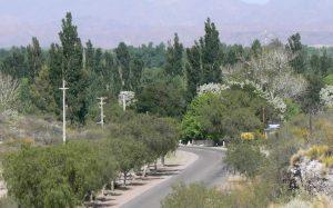 villa251